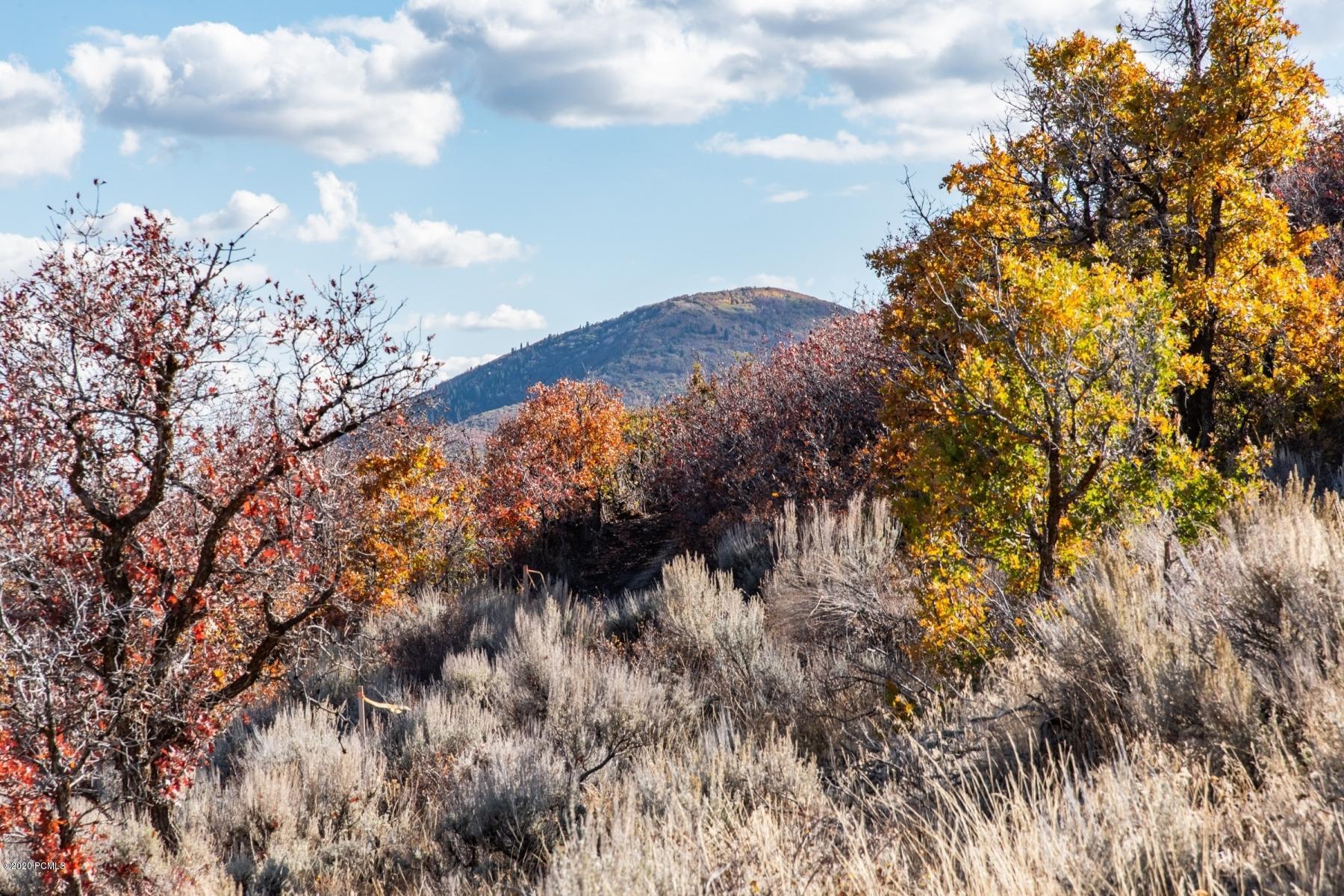 1606 Skyridge Drive, Heber City, Utah 84032, ,Land,For Sale,Skyridge,20190109112430415765000000