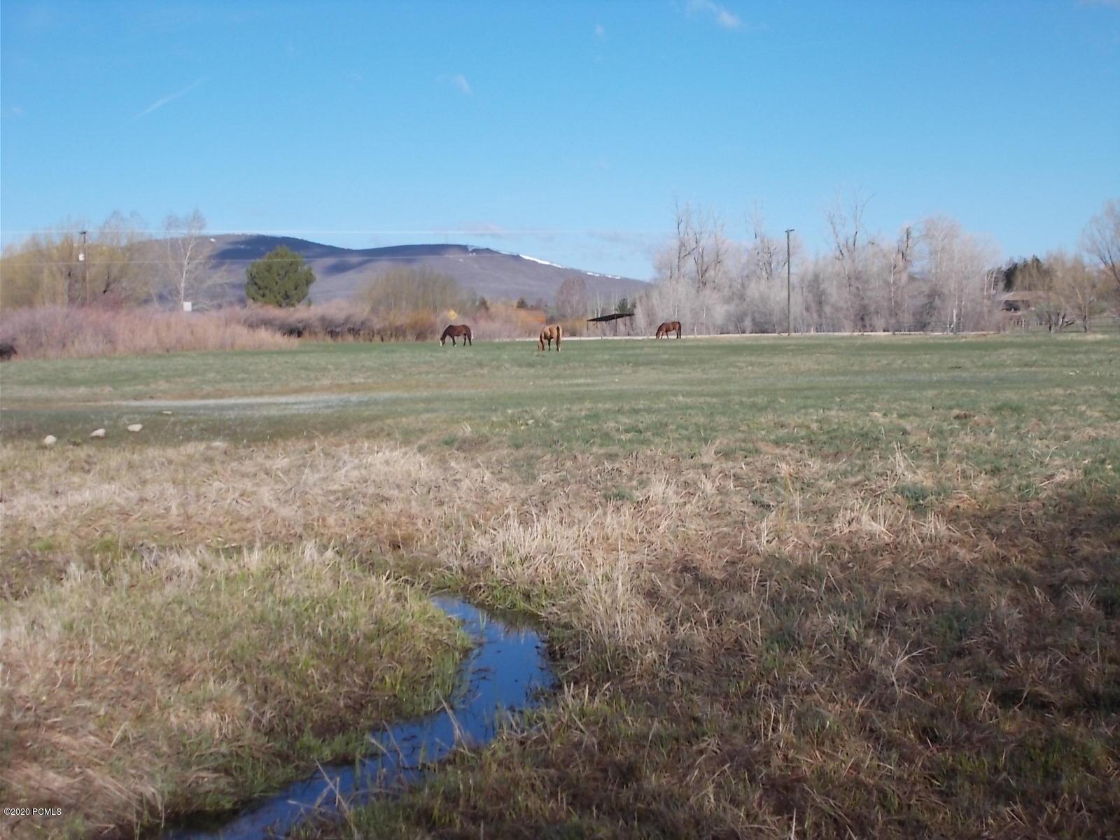 4550 Millrace Road, Oakley, Utah 84055, ,Land,For Sale,Millrace,20190109112430415765000000