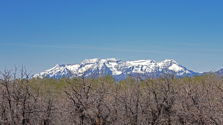 2173 Westward Ho Road, Woodland, Utah 84036, ,Land,For Sale,Westward Ho,20190109112430415765000000