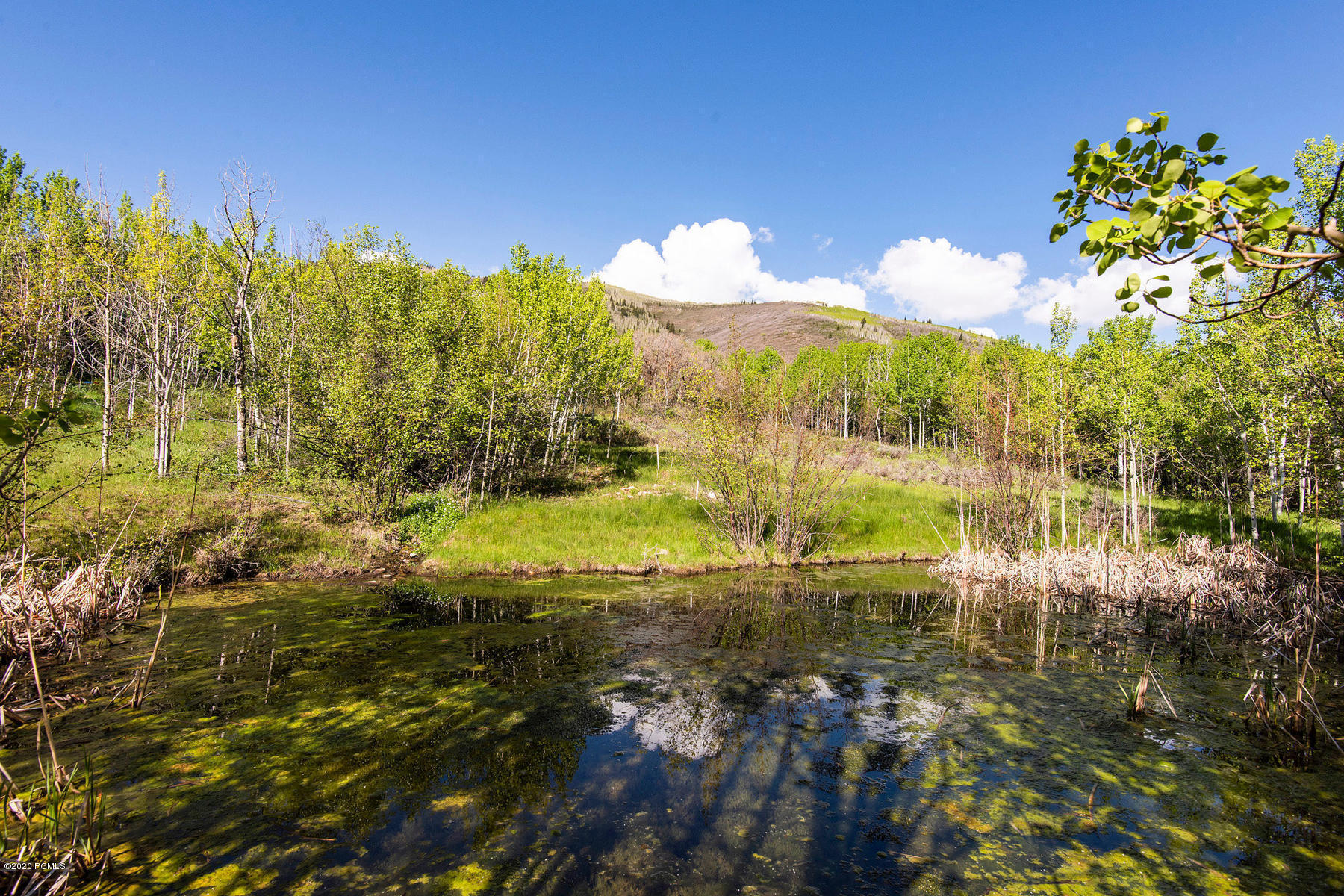 2625 Aspen Springs Drive, Park City, Utah 84060, ,Land,For Sale,Aspen Springs,20190109112430415765000000