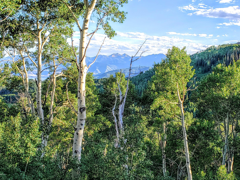 5444 Hidden Way, Midway, Utah 84049, ,Land,For Sale,Hidden,12003170