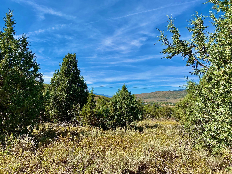 4481 Aspen Hollow Road, Woodland, Utah 84036, ,Land,For Sale,Aspen Hollow,12003138