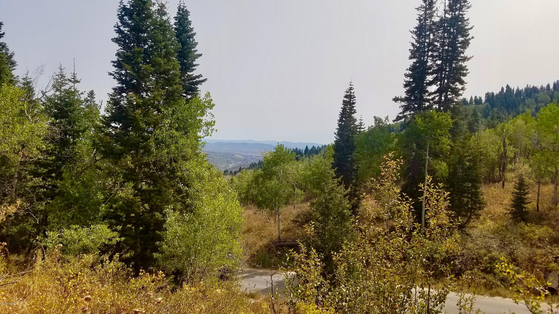 1560 Tollgate Canyon Road, Wanship, Utah 84017, ,Land,For Sale,Tollgate Canyon,12003542