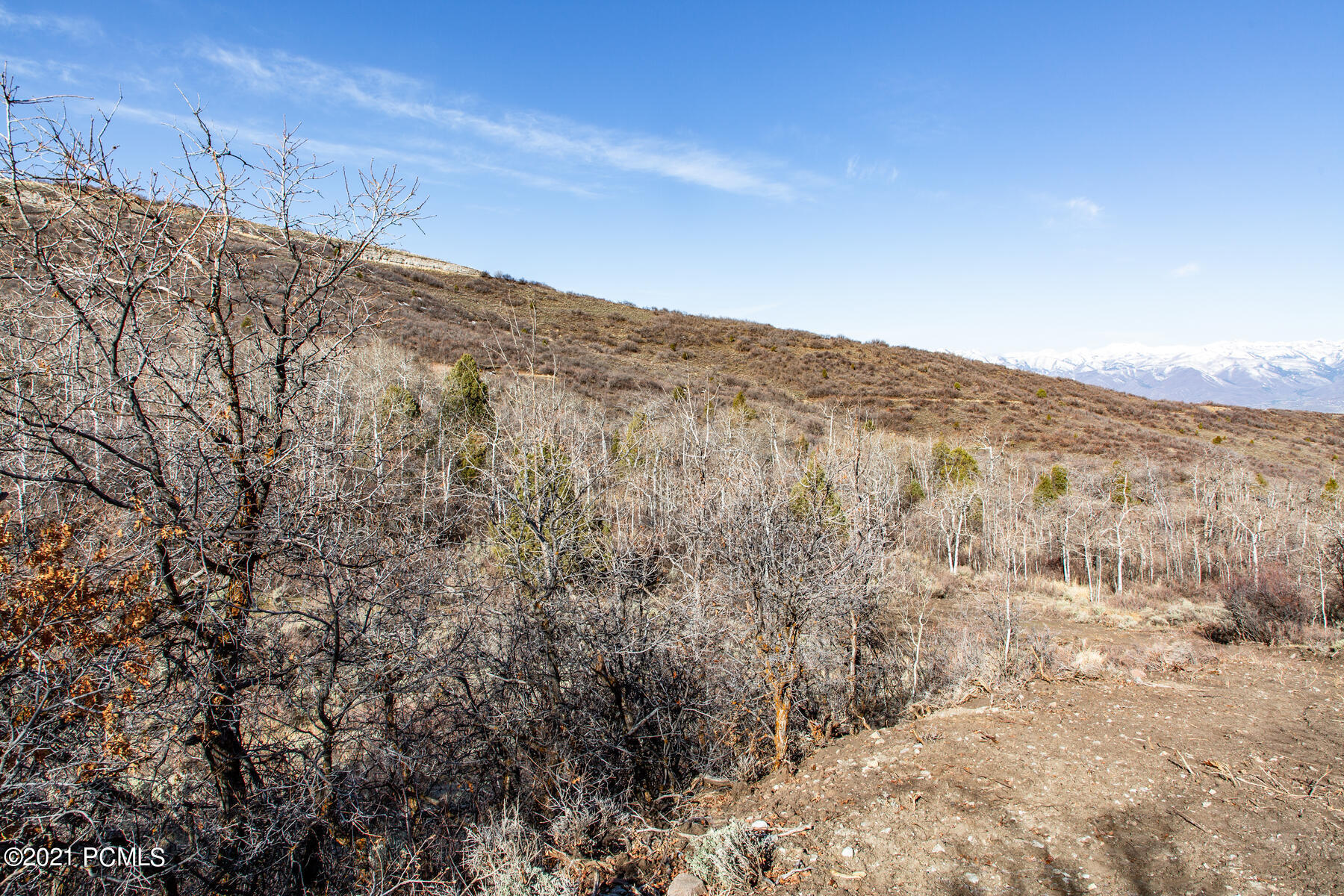 This 1.8 acre lot boasts amazing western views and is located in a secluded area of the Timber Lakes gated community. The private, peaceful setting is within minutes of Heber City, reservoirs, and the ski mountains. Build your dream primary or secondary retreat and migrate to enjoy the Utah mountain lifestyle. The adjacent 1.5 acre lot is also available. Plans by Upwall Design included.