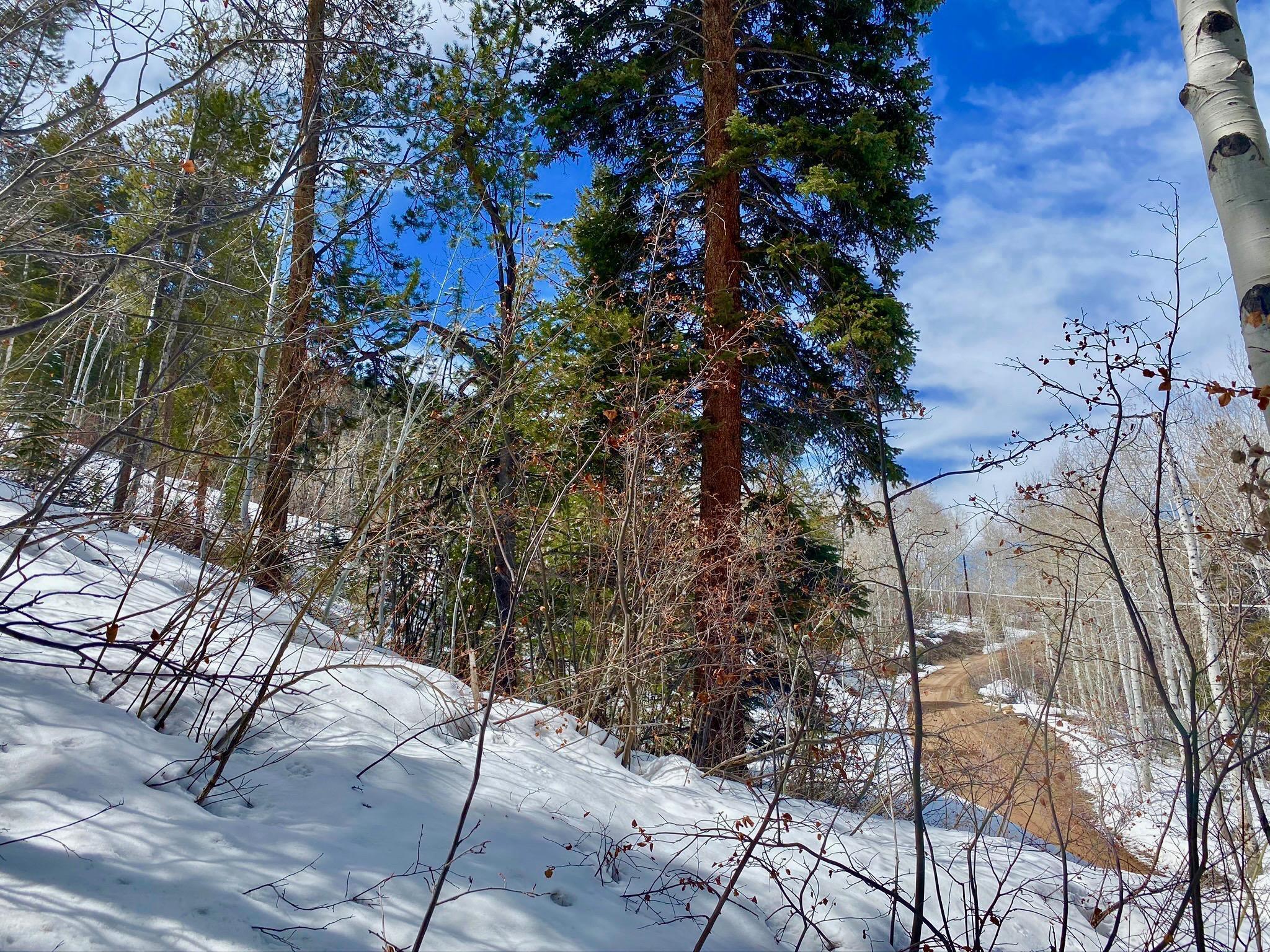 6436 Rock Slide Circle, Kamas, Utah 84036, ,Land,For Sale,Rock Slide,12101913