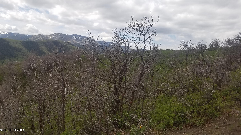 153 Mountain View, Oakley, Utah 84055, ,Land,For Sale,Mountain View,12102179