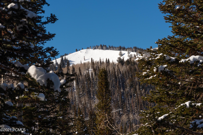 208 White Pine Canyon Road, Park City, Utah 84060, ,Land,For Sale,White Pine Canyon,12102739