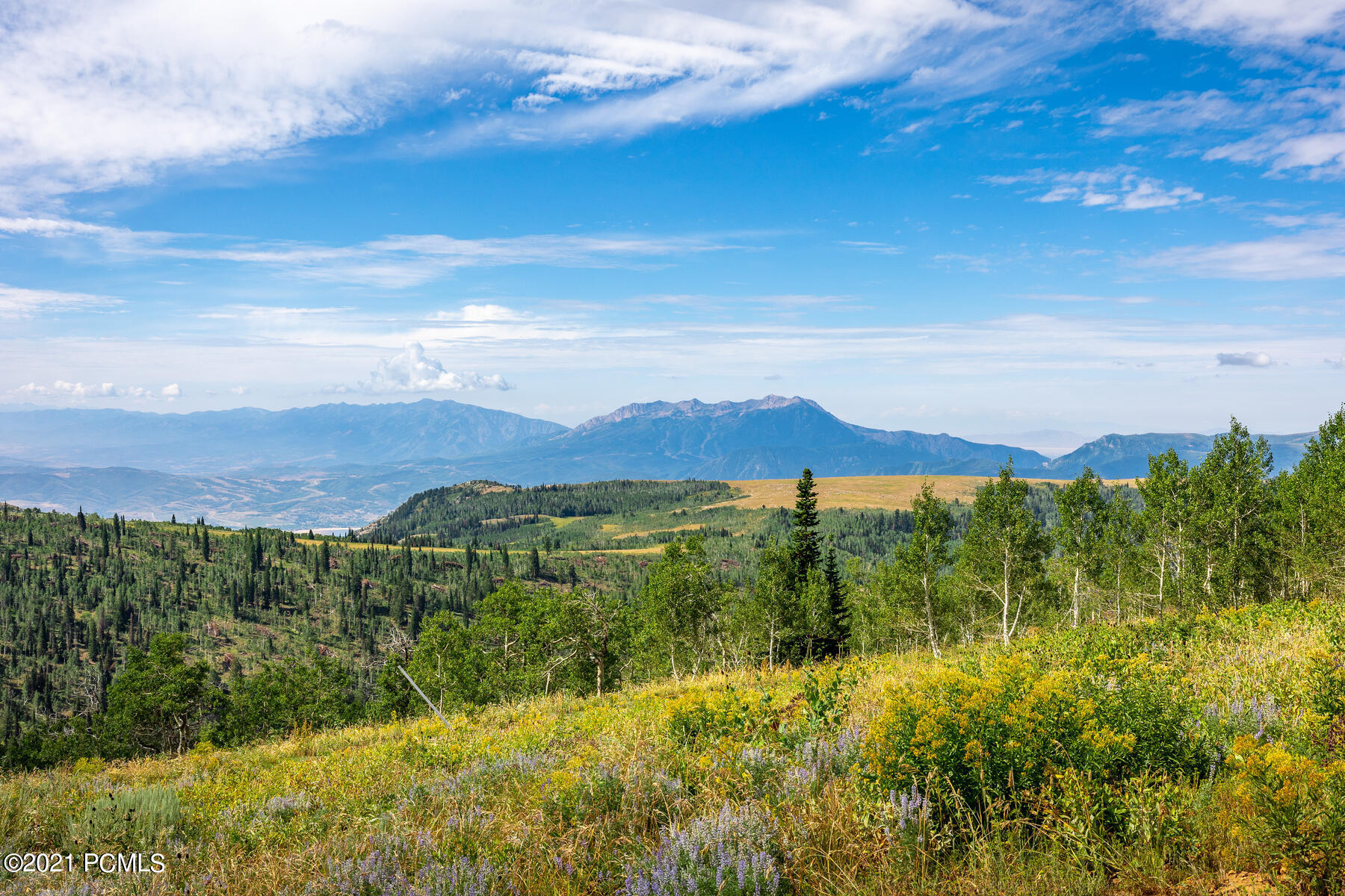 7781 Horizon Run Road, Eden, Utah 84310, ,Land,For Sale,Horizon Run,12103125