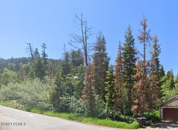 195 Saint Moritz Drive, Park City, UT 84098