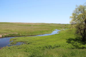Spring fed Sand Creek flows thru property