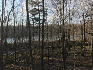 Lot 119 Mountain Rd, Albrightsville, PA 18210
