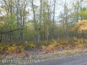 Lot 920 FOREST DR, Canadensis, PA 18325