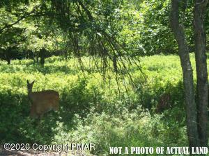 EV824 Petrarch Trail, Albrightsville, PA 18210