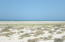 S30 FB HWY 37, Playa San Jorge, Puerto Penasco,
