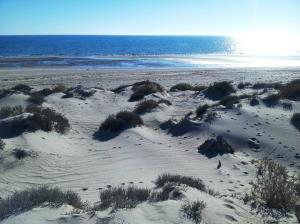 S20 L2 Playa Dorada, Puerto Penasco,