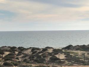 M6 L1 Playa Miramar, Puerto Penasco,