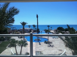 202 Luna Blanca Resorts, Puerto Penasco,