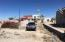 M3 L8 Pez Martillo, Cholla Bay, Puerto Penasco,