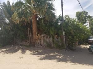 362 Av J. Escutia Y G. Escalante, Puerto Penasco,