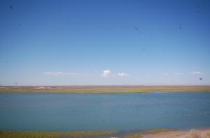 Estuary View!