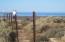 M16/S1/L16 LOPEZ ACEVES, Puerto Penasco,