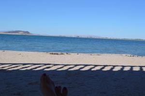 M68 L46 Calamar Cholla Bay, Puerto Penasco,