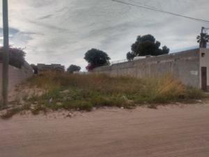 MXIBIS L13 Ave. De Los Pinos, Puerto Penasco,