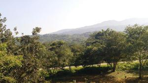 16 Carretera El Tuito-Chacala, Lot Tierra Alta, Sierra Madre Jalisco, JA