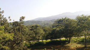 19 Carretera El Tuito-Chacala, Lot Tierra Alta, Sierra Madre Jalisco, JA