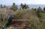 27 Alta Vista, Lot 27 Punta del Burro, Riviera Nayarit, NA