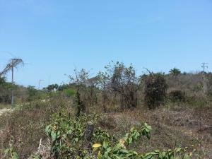Sin Numero Selva, Lote Linda, Riviera Nayarit, NA