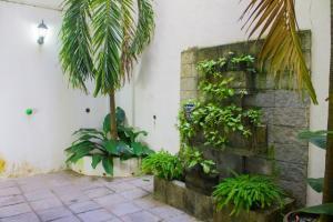 85 Privada Allende 1, Punta Verde, Puerto Vallarta, JA