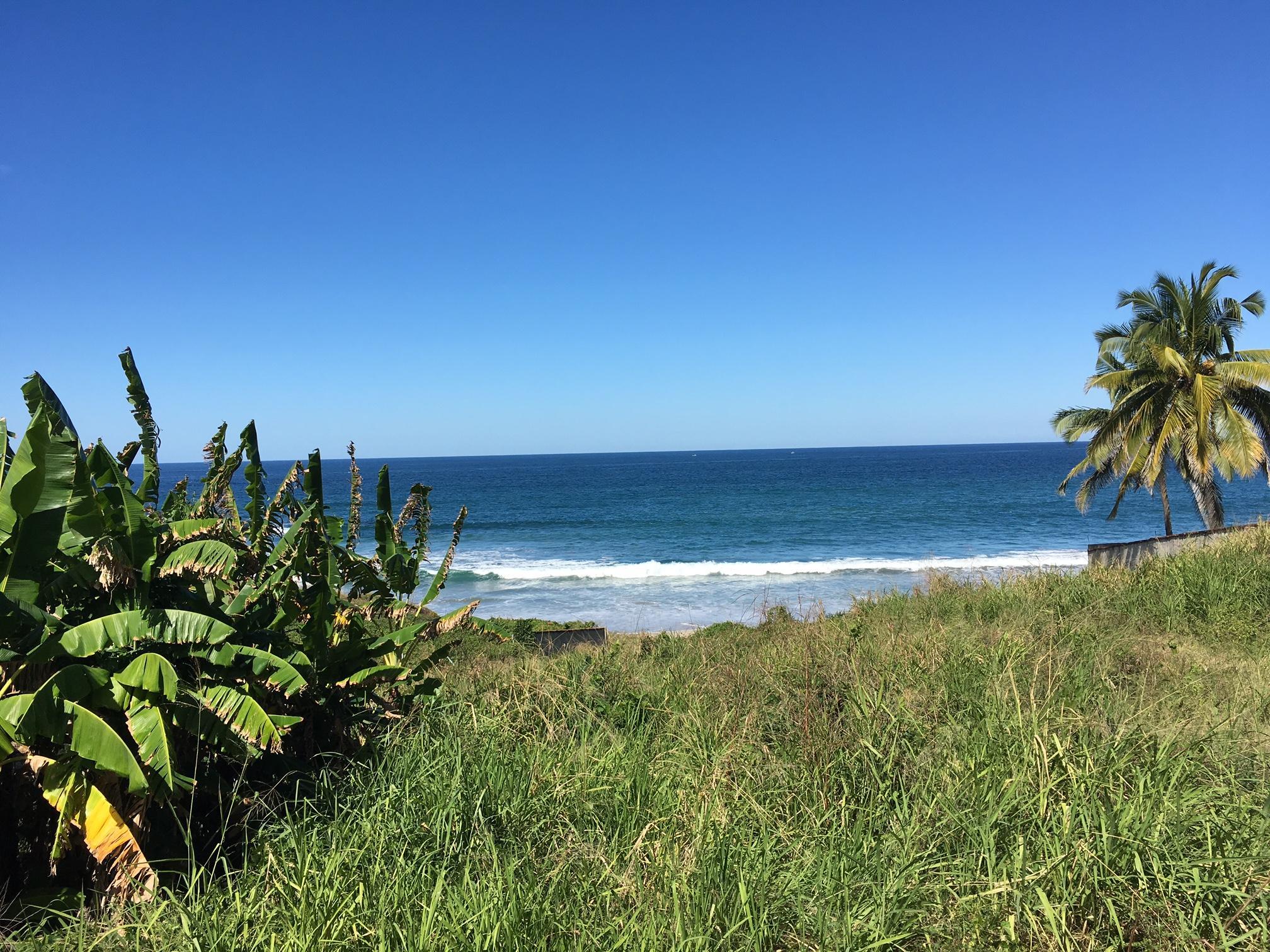 Punta Negra Carreyeros Higuera