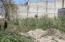 16 Chihuahua, LOTE MOJONERAS, Puerto Vallarta, JA