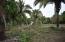 C13 S/N, Lot Harvey, Riviera Nayarit, NA