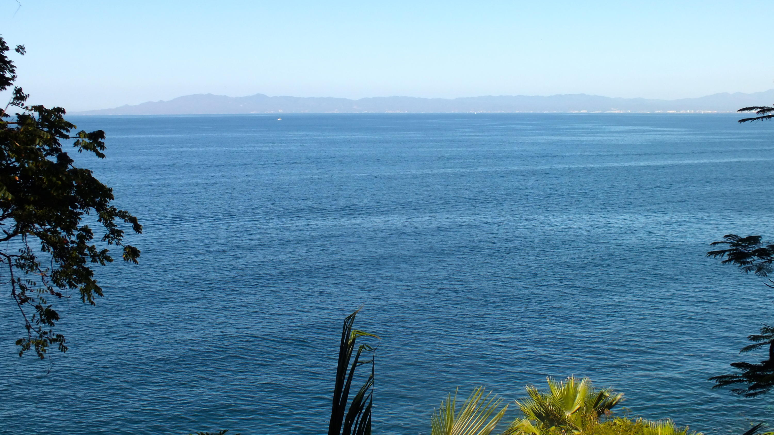 OCEANFRONT LOTE 11