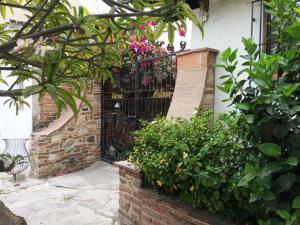42 Carmen Serdan, Casa Ocean View, Riviera Nayarit, NA