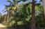 0 Higuera Blanca, Litibu Land Lot, Riviera Nayarit, NA