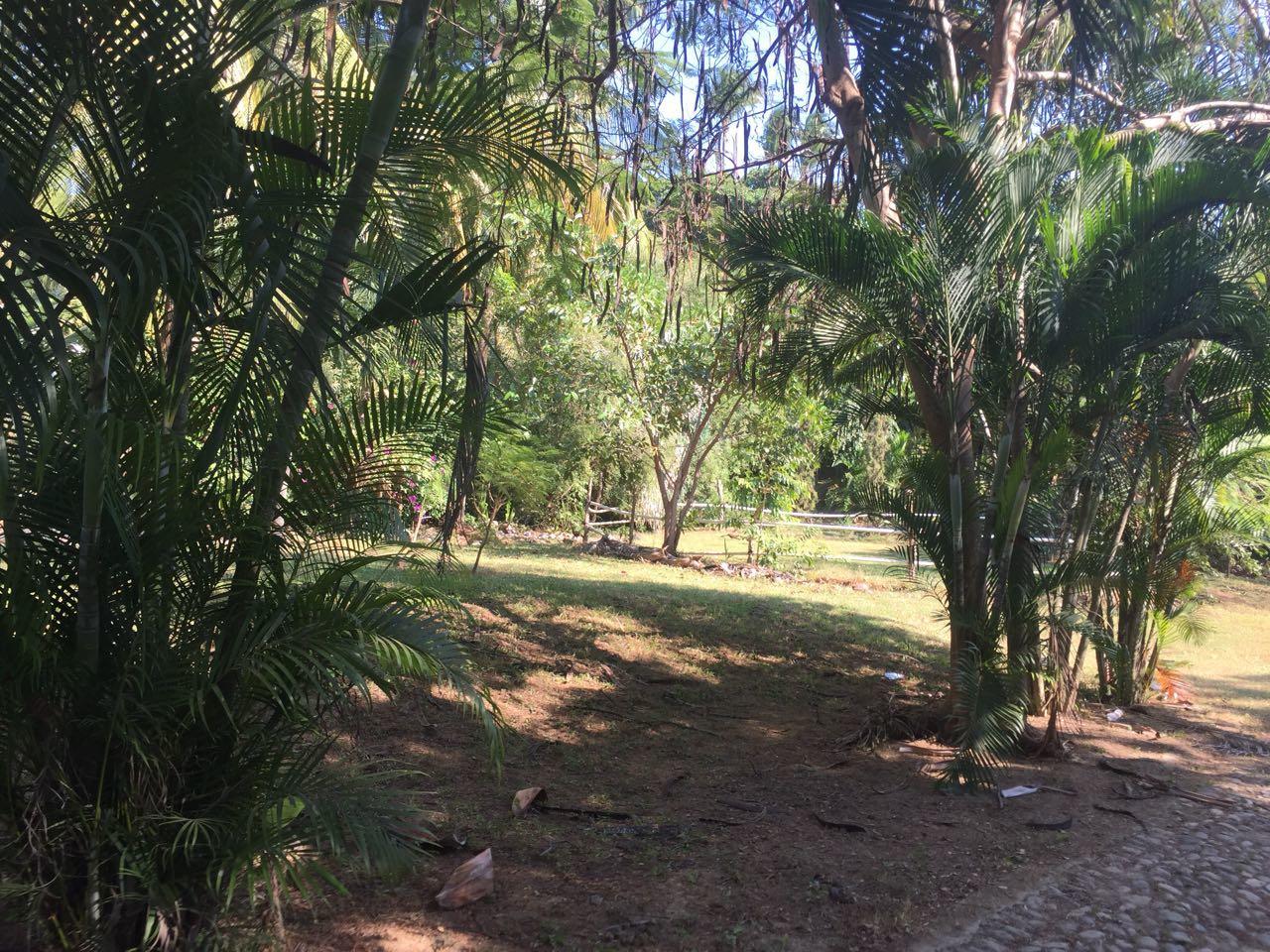 San Pancho, ,Land,For Sale,Colinas de San Miguel,12306