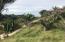 s/n Chiripa, Massier Lot, Riviera Nayarit, NA