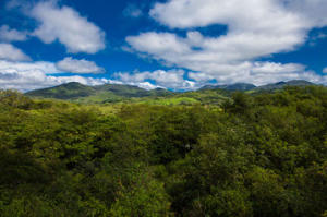 S/N Carretera El Tuito-Chacala, Tierra Alta 15, Sierra Madre Jalisco, JA