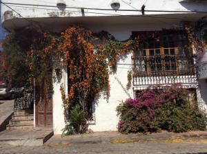 103 Zaragoza, Villa Bugambilia, Puerto Vallarta, JA