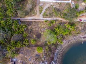 40 bougainvillea, Alta Mira, Riviera Nayarit, NA