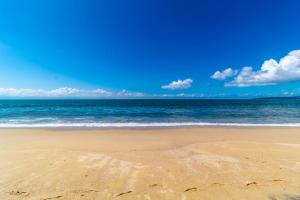 PVRPV - 15 Beach