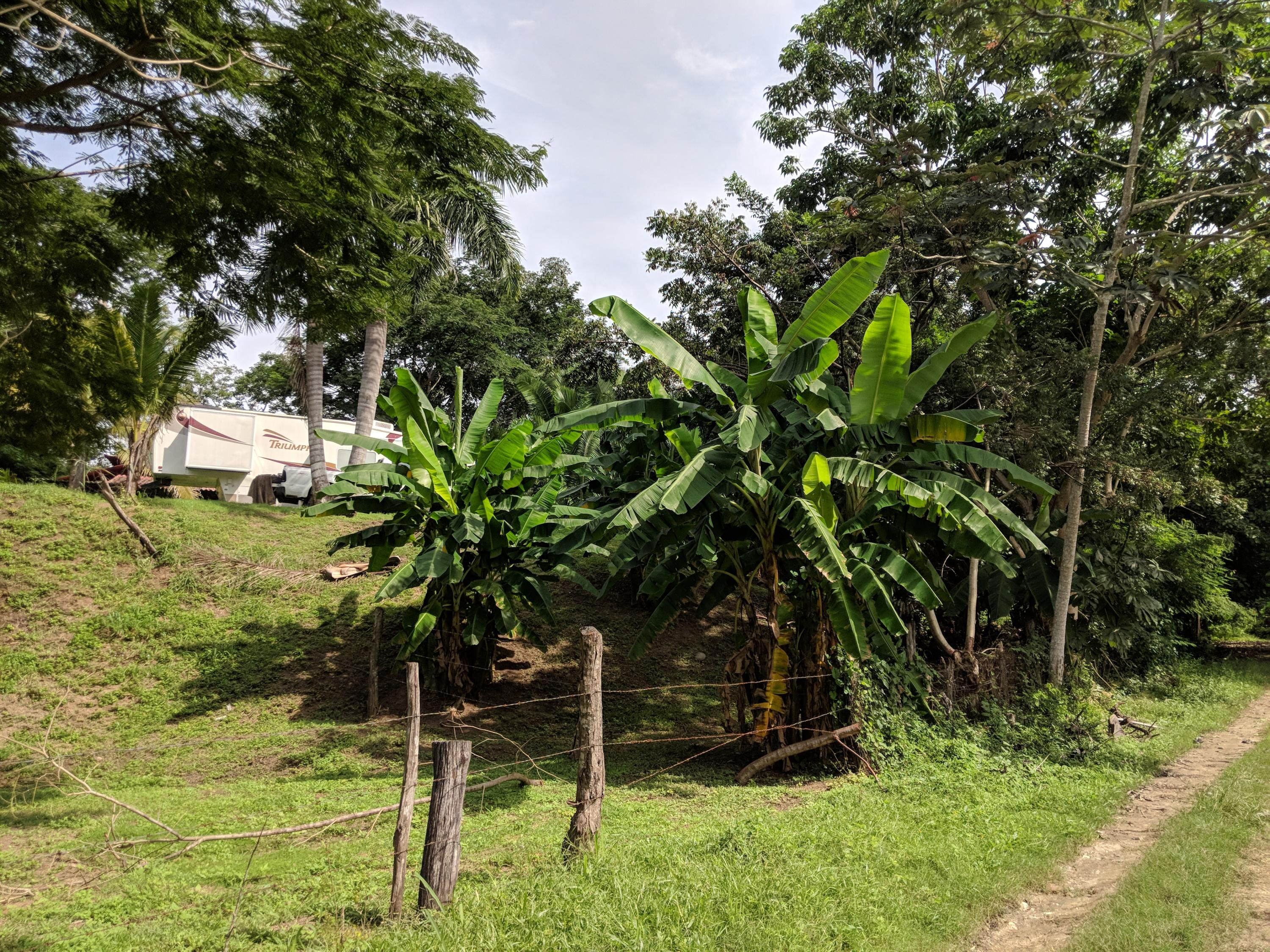 Sayulita, ,Land,For Sale,of the plot,14628