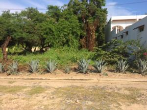 2 Avenida Jaltemba, Lote Reyes, Riviera Nayarit, NA