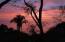 652 Camino Playa Carricitos, Panoramas Carricitos, Riviera Nayarit, NA