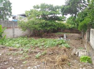 1182 Lazaro Cardenas, Lote Tere, Puerto Vallarta, JA