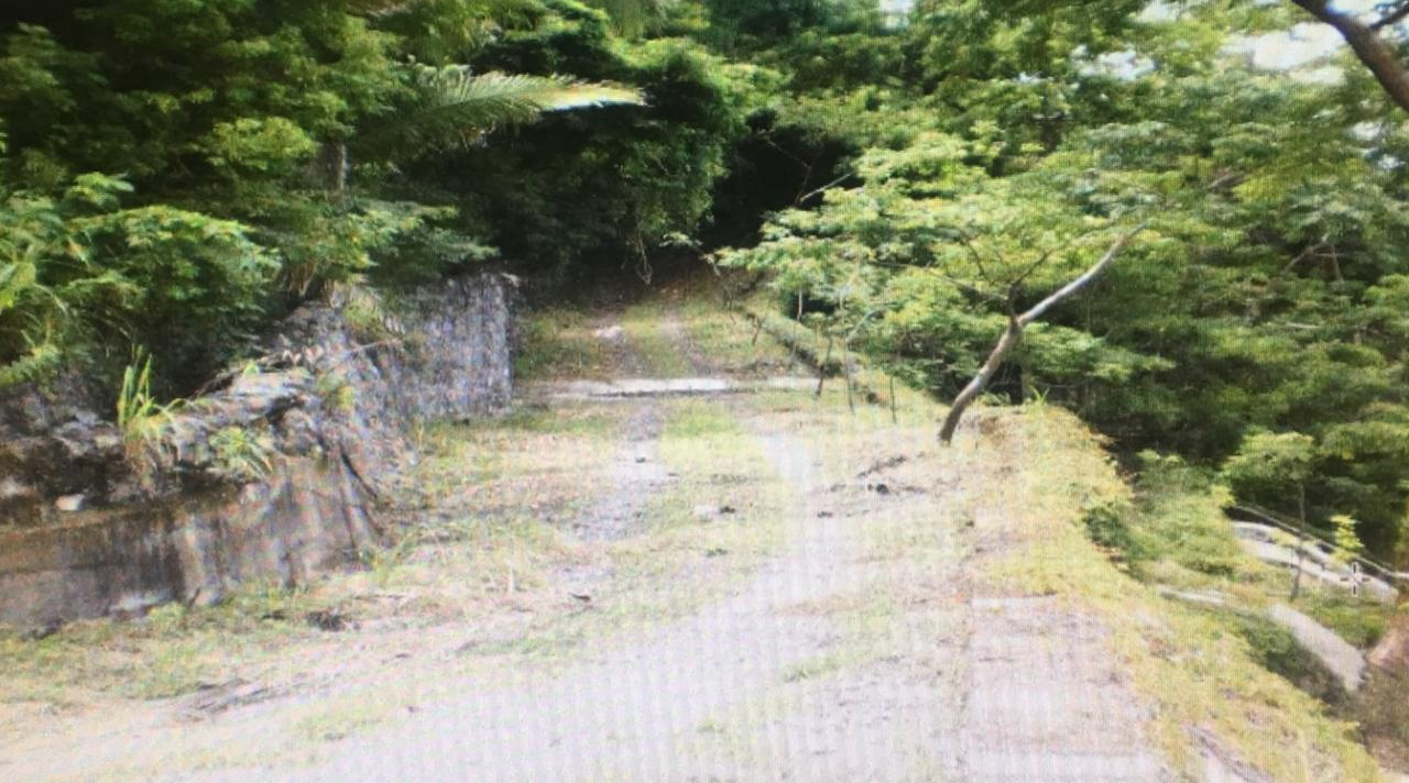 South Shore, ,Land,For Sale,CALLE GLADIOLAS,15709
