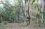 676 Camino a Playa Escondida, Seven Parcel Plan, Riviera Nayarit, NA